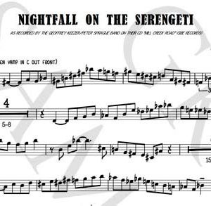 pdf_sample_NightFallonSerengeti